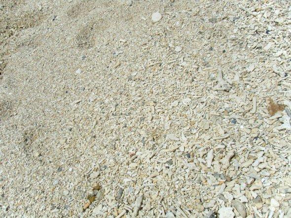 ブセナビーチ砂浜