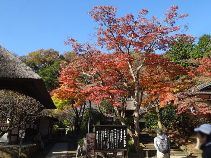 円覚寺居士林