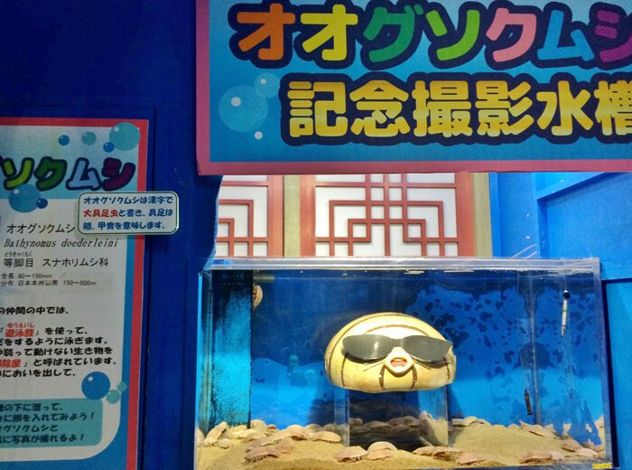 ヨコハマおもしろ水族館